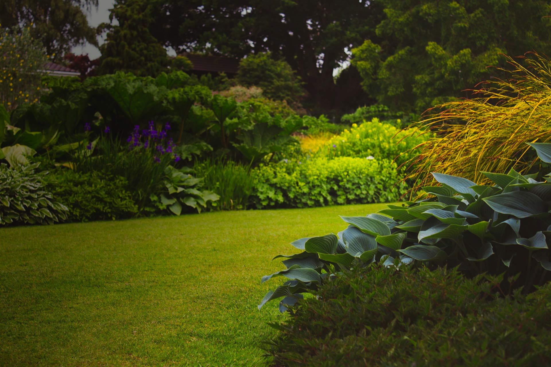 Entretien de jardins entretien de jardins nancy taille for Entretien de jardins
